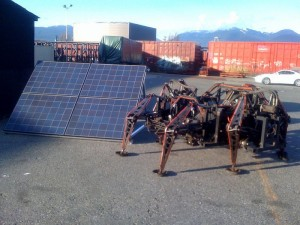 Mondo Spider with Solar - Leigh Christie